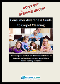 Consumer Awareness Guide to Carpet Cleaning